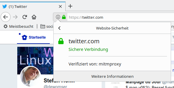 Mitmproxy Screenshot im Firefox 60.01